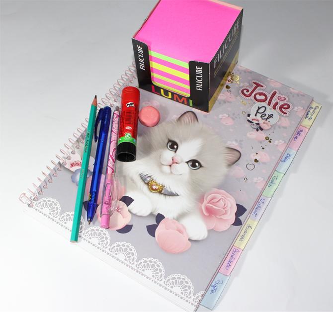 caderninho1
