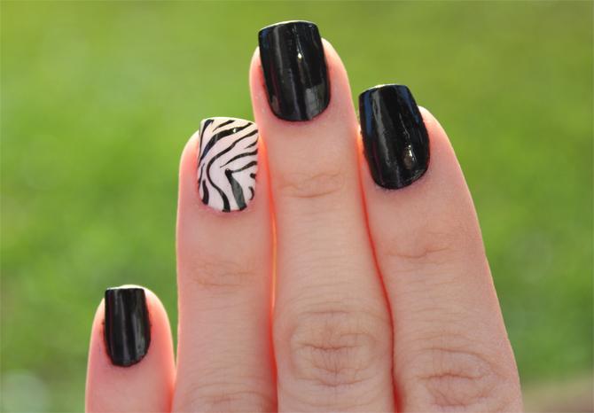 1- unha de zebrinha  copy