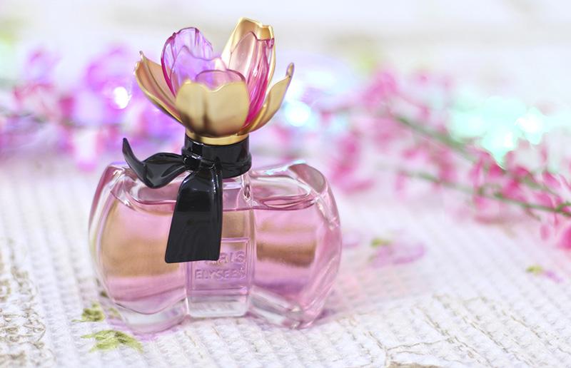 2-la petite fleur damour paris elysees resenha jana taffarel