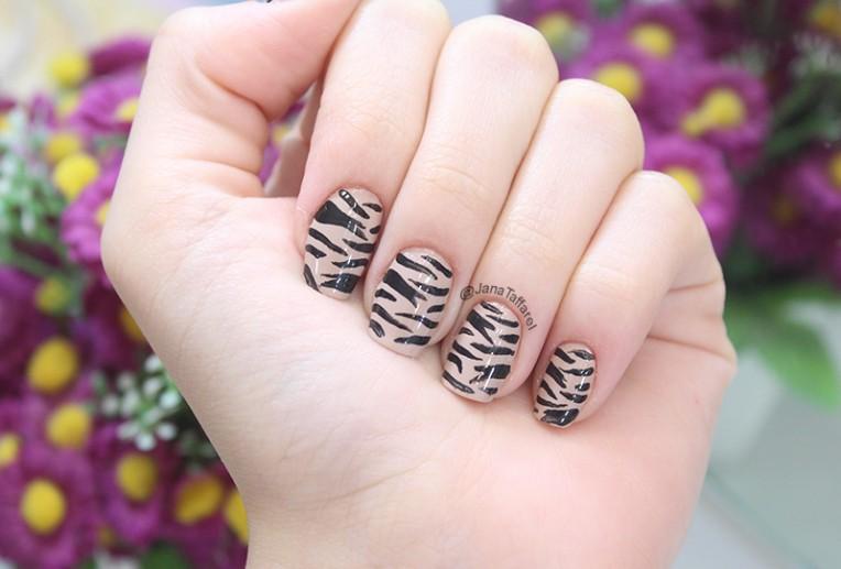 2-unhas selvagens - zebra